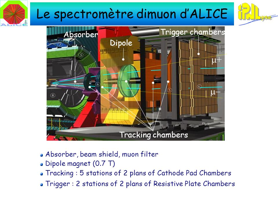 Le spectromètre dimuon dALICE Absorber, beam shield, muon filter Dipole magnet (0.7 T) Tracking : 5 stations of 2 plans of Cathode Pad Chambers Trigger : 2 stations of 2 plans of Resistive Plate Chambers + Tracking chambers Absorber Dipole Trigger chambers