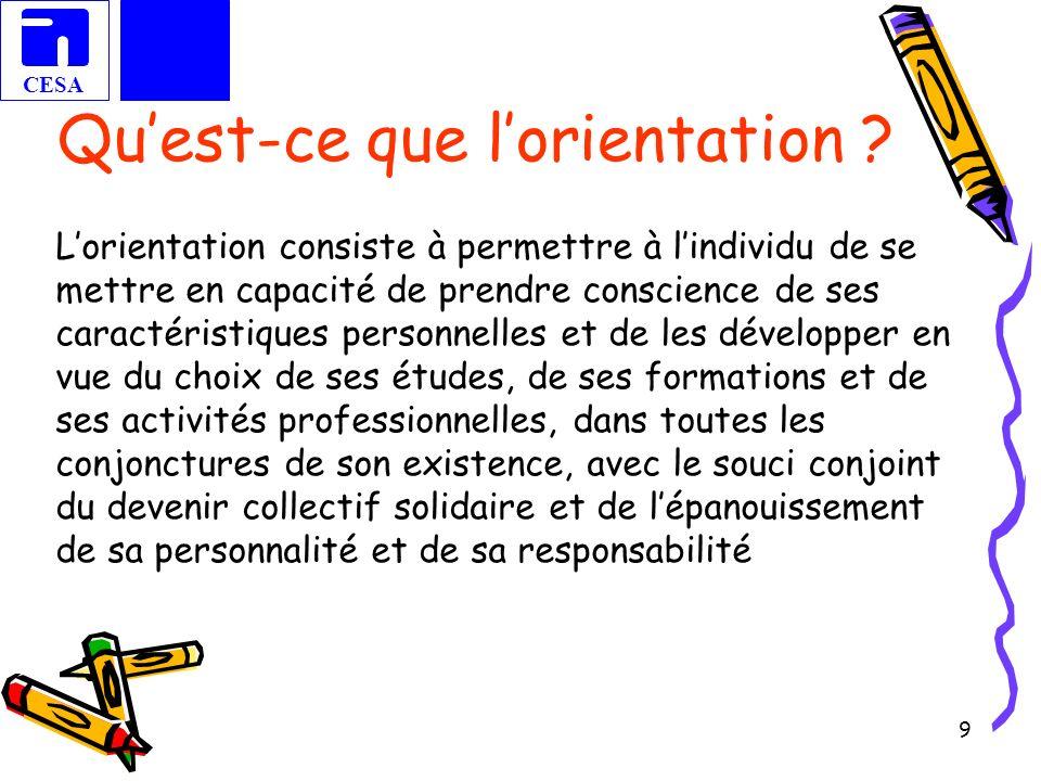CESA 10 Mise en évidence des spécificités de lorientation par rapport à laccompagnement, linformation.