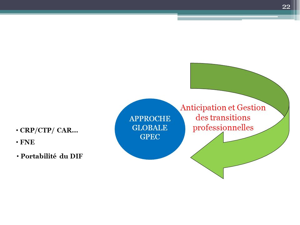 Anticipation et Gestion des transitions professionnelles Portabilité du DIF CRP/CTP/ CAR… FNE APPROCHE GLOBALE GPEC 22