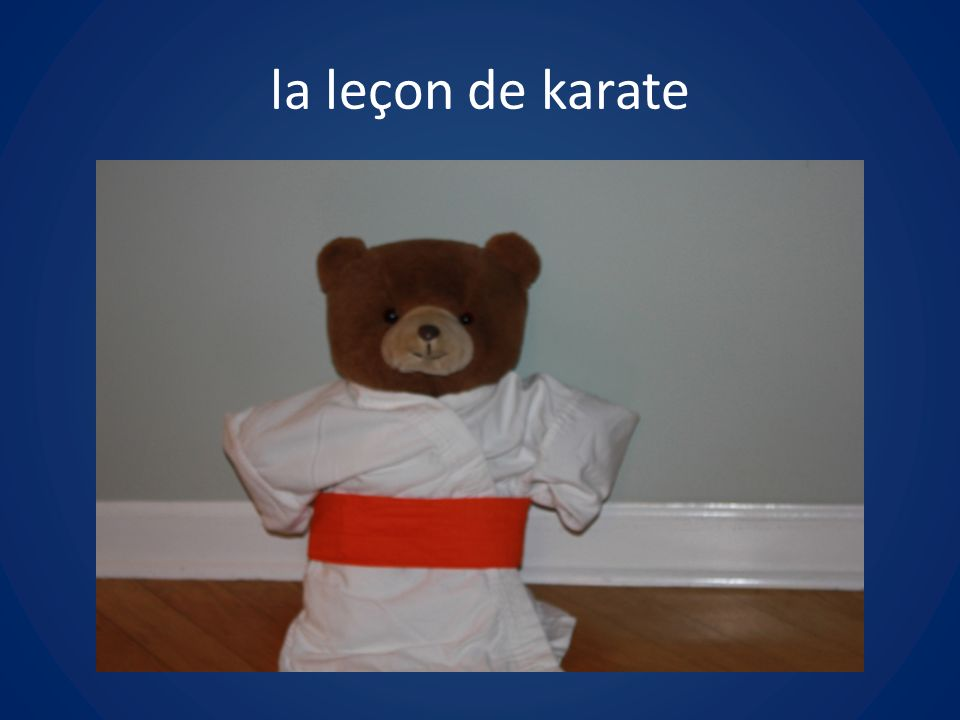 la leçon de karate