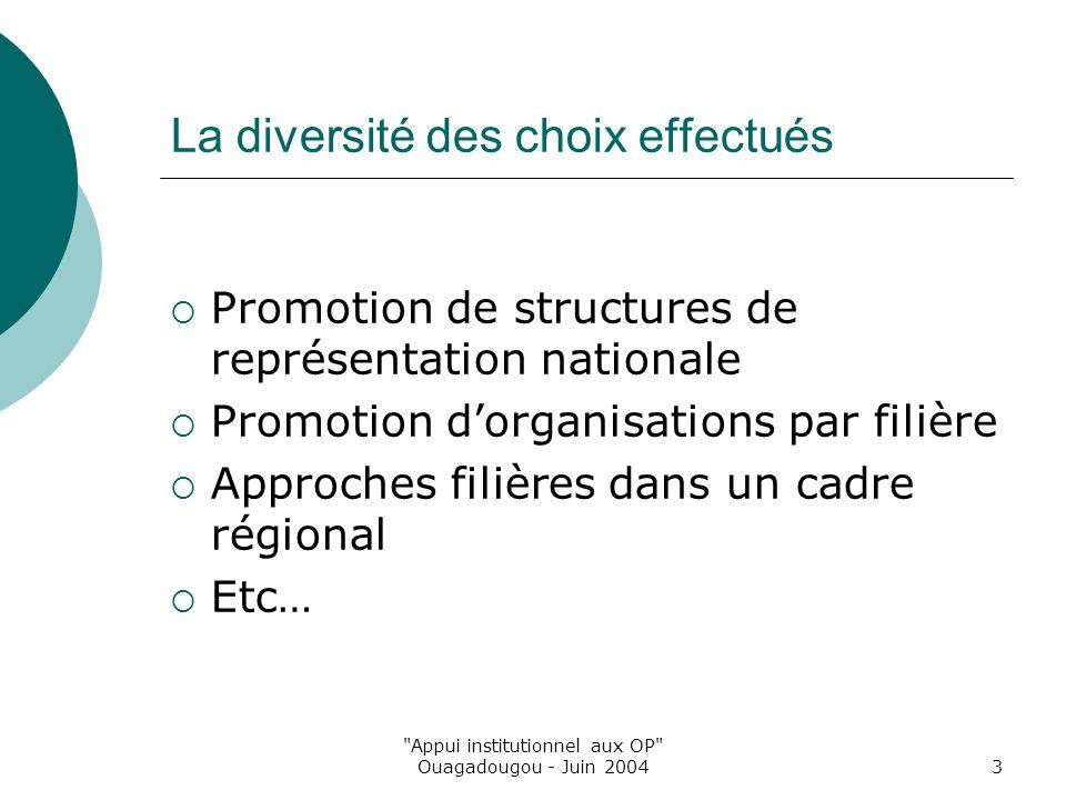 Appui institutionnel aux OP Ouagadougou - Juin 20043 La diversité des choix effectués Promotion de structures de représentation nationale Promotion dorganisations par filière Approches filières dans un cadre régional Etc…