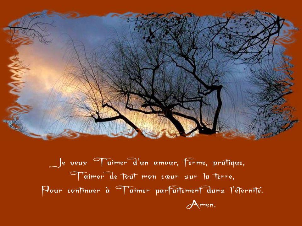 Reste avec moi, Seigneur, cest Toi seul que je cherche : ton amour, Ta grâce, Ta volonté, Ton cœur, Ton esprit, Parce que je Taime et ne demande pas Dautre récompense que de Taimer davantage.