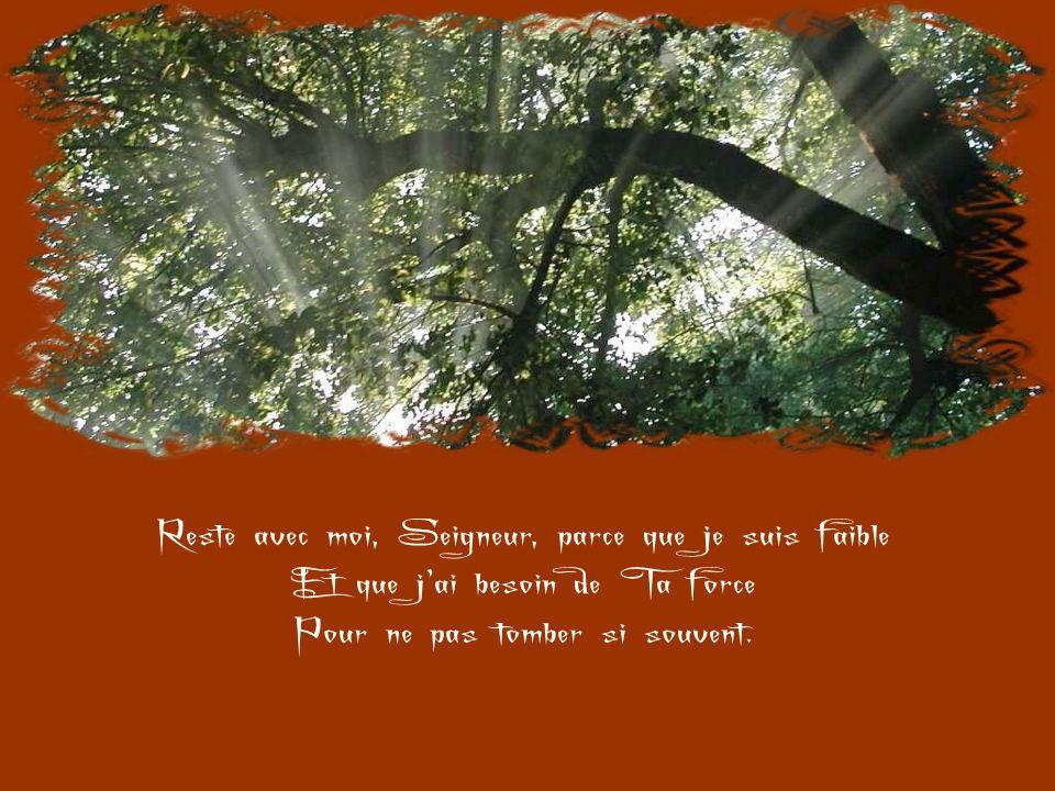 Reste avec moi, Seigneur, car il est nécessaire De Tavoir présent pour ne pas toublier. Tu sais avec quelle facilité je Tabandonne.