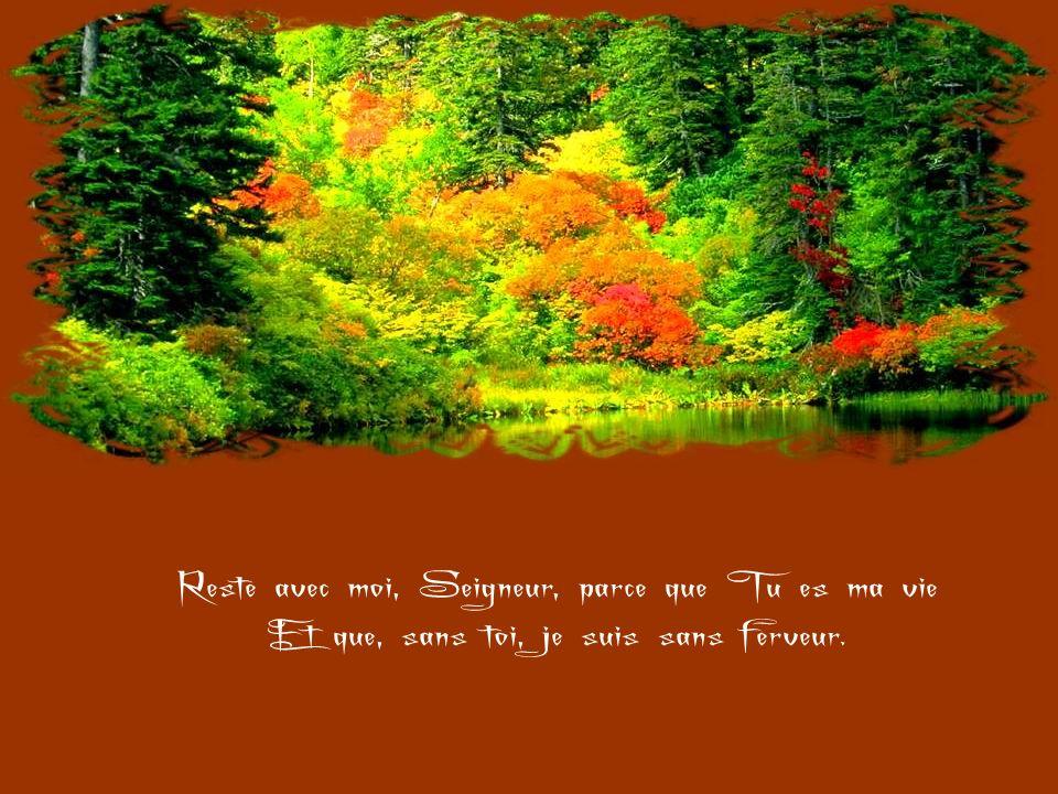 Reste avec moi, Seigneur, parce que je suis faible Et que jai besoin de Ta force Pour ne pas tomber si souvent.