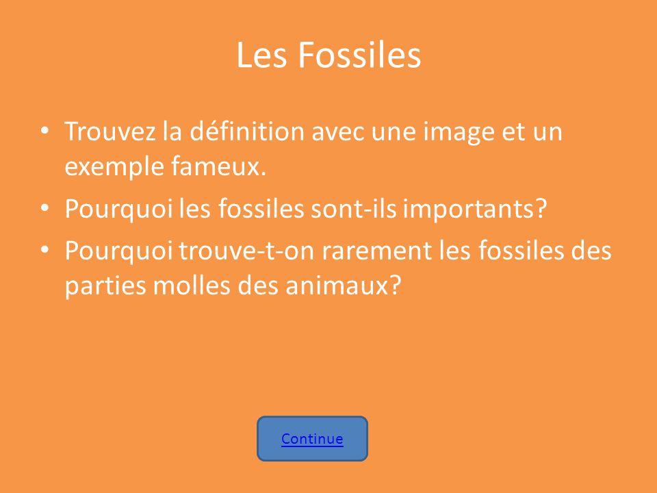 Les Fossiles Trouvez la définition avec une image et un exemple fameux. Pourquoi les fossiles sont-ils importants? Pourquoi trouve-t-on rarement les f