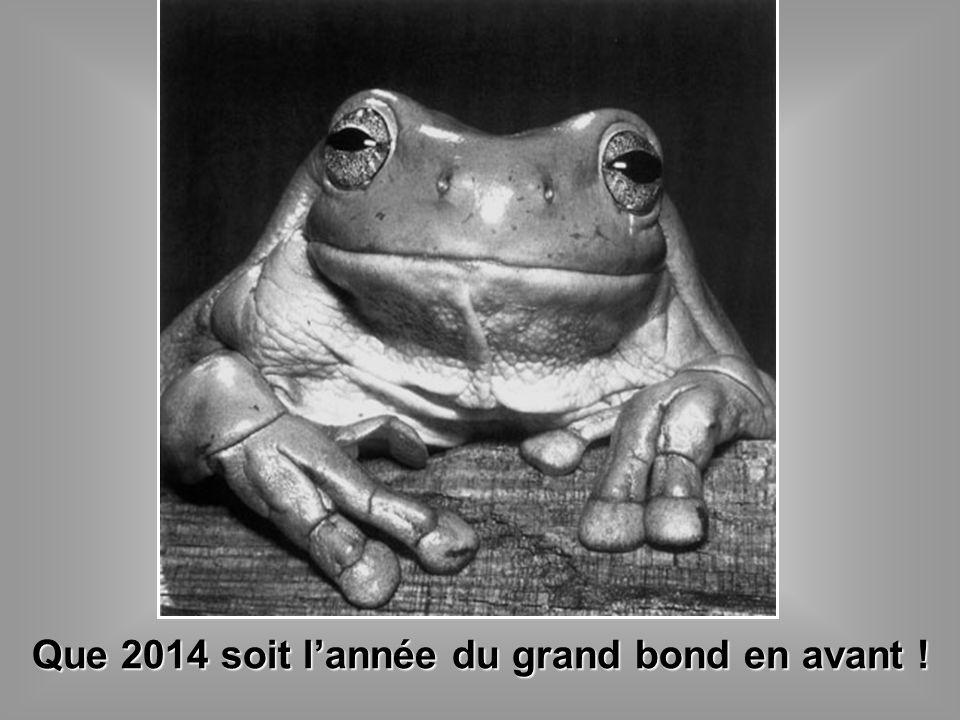 Que 2014 soit lannée du grand bond en avant !