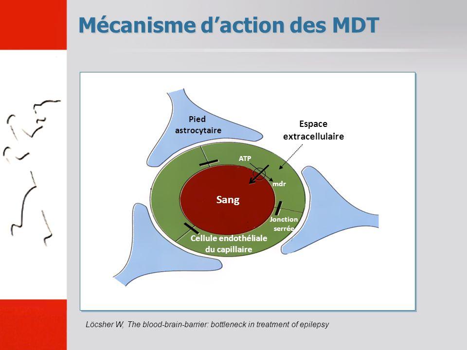 Mécanisme daction des MDT Löcsher W, The blood-brain-barrier: bottleneck in treatment of epilepsy Sang Espace extracellulaire Jonction serrée Cellule endothéliale du capillaire Pied astrocytaire ATP mdr
