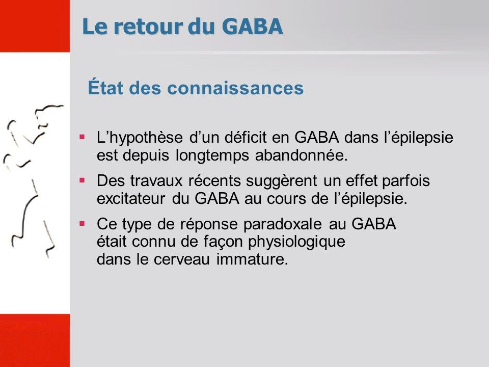 Lhypothèse dun déficit en GABA dans lépilepsie est depuis longtemps abandonnée. Des travaux récents suggèrent un effet parfois excitateur du GABA au c