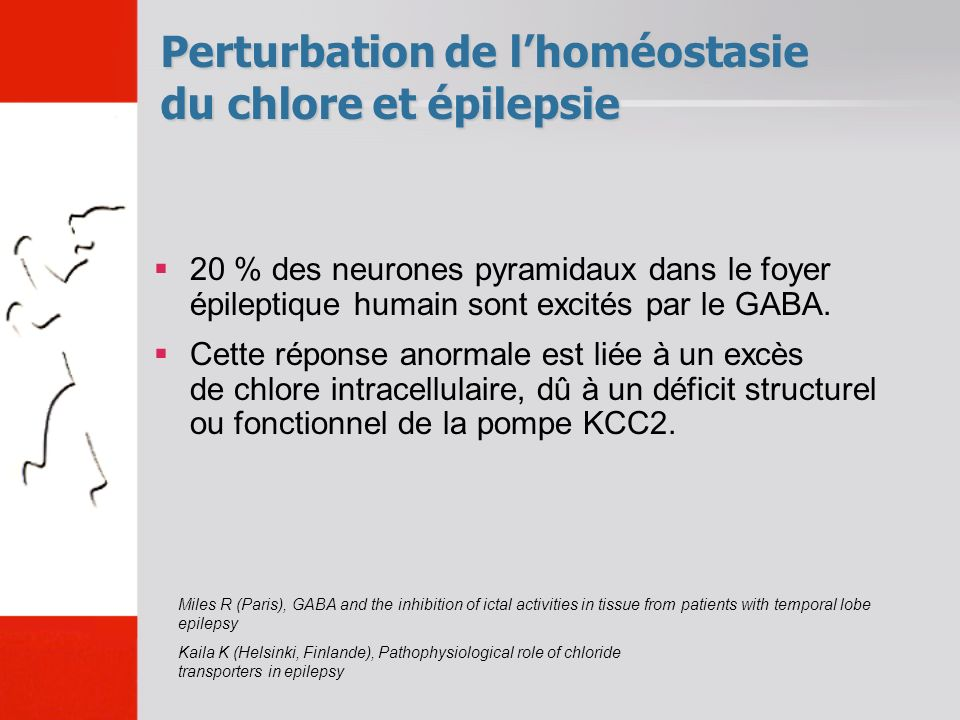 Perturbation de lhoméostasie du chlore et épilepsie Miles R (Paris), GABA and the inhibition of ictal activities in tissue from patients with temporal