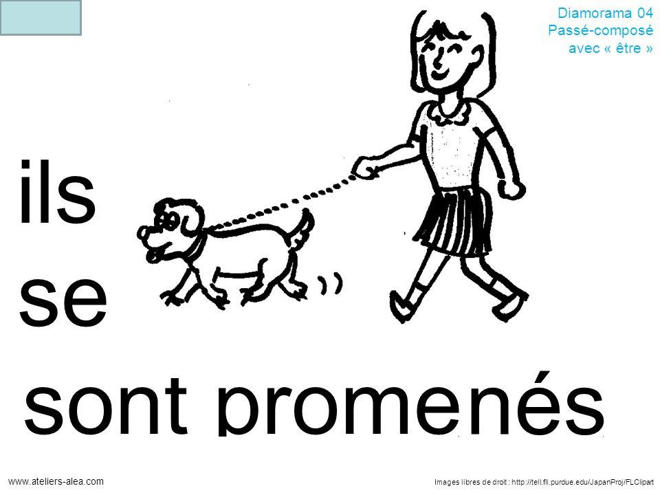 Images libres de droit : http://tell.fll.purdue.edu/JapanProj/FLClipart www.ateliers-alea.com Diamorama 04 Passé-composé avec « être » promesont ils s