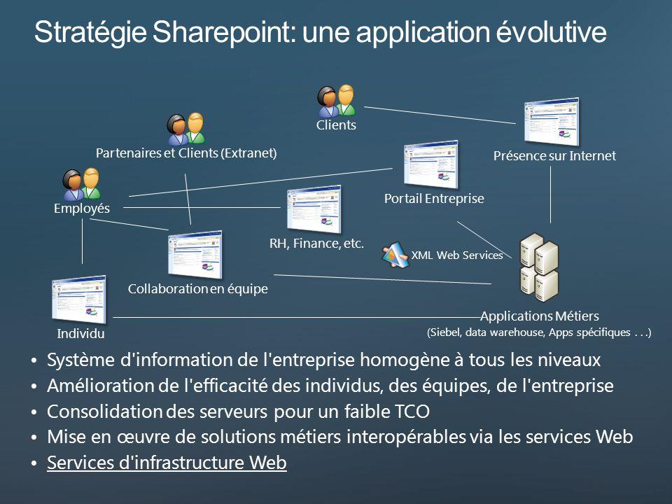 RH, Finance, etc.Collaboration en équipeIndividuPortail Entreprise Présence sur Internet EmployésClientsPartenaires et Clients (Extranet) Applications