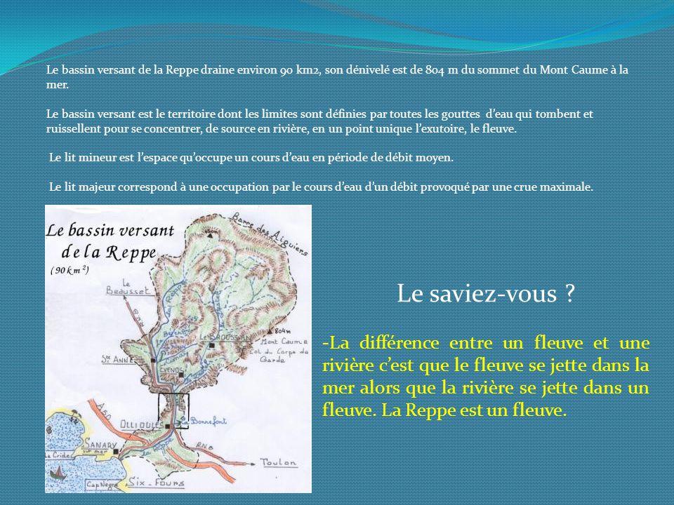 Le bassin versant de la Reppe draine environ 90 km2, son dénivelé est de 804 m du sommet du Mont Caume à la mer. Le bassin versant est le territoire d