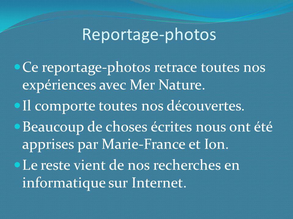 La situation La Reppe prend sa source au Nord du Beausset.