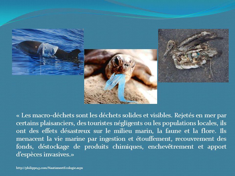 « Les macro-déchets sont les déchets solides et visibles. Rejetés en mer par certains plaisanciers, des touristes négligents ou les populations locale