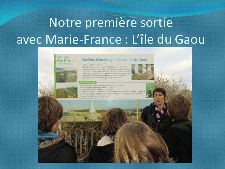Notre première sortie avec Marie-France : Lîle du Gaou