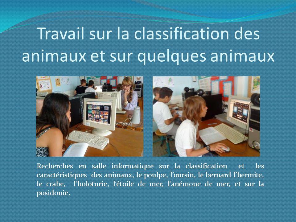Travail sur la classification des animaux et sur quelques animaux Recherches en salle informatique sur la classification et les caractéristiques des a