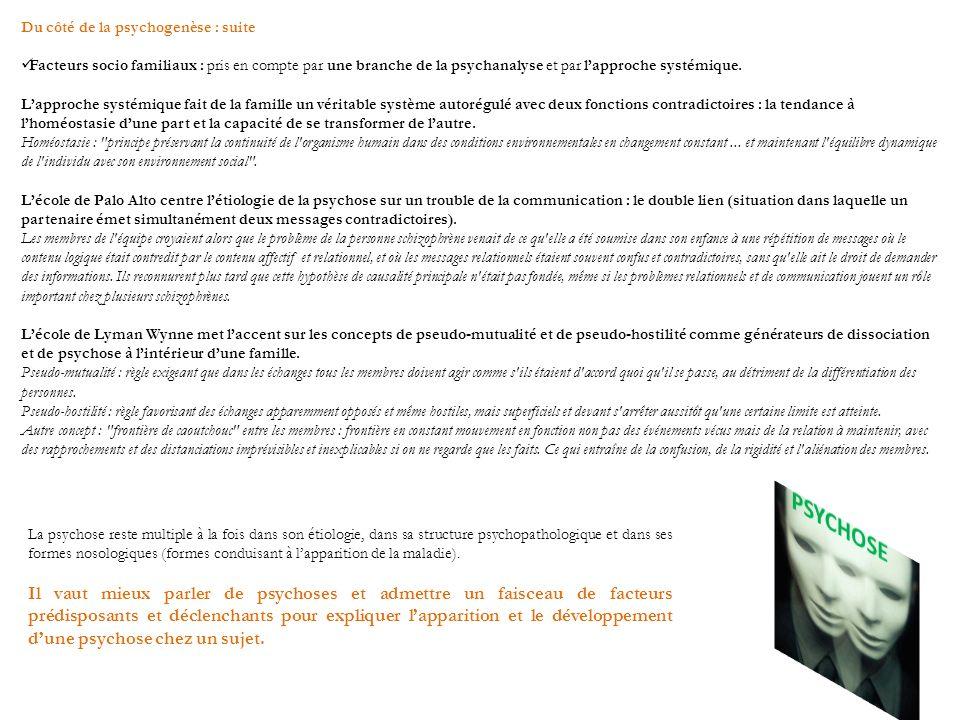 Du côté de la psychogenèse : suite Facteurs socio familiaux : pris en compte par une branche de la psychanalyse et par lapproche systémique. Lapproche