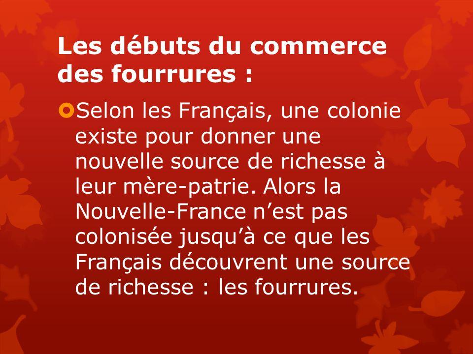 Les débuts du commerce des fourrures : Selon les Français, une colonie existe pour donner une nouvelle source de richesse à leur mère-patrie. Alors la