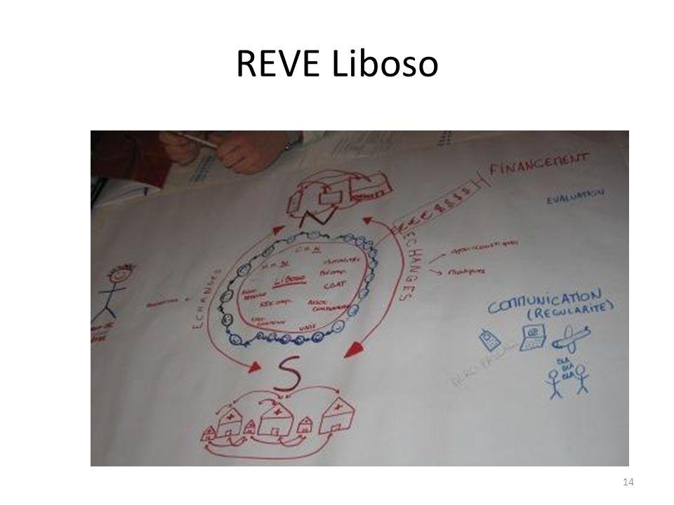 REVE Liboso 14