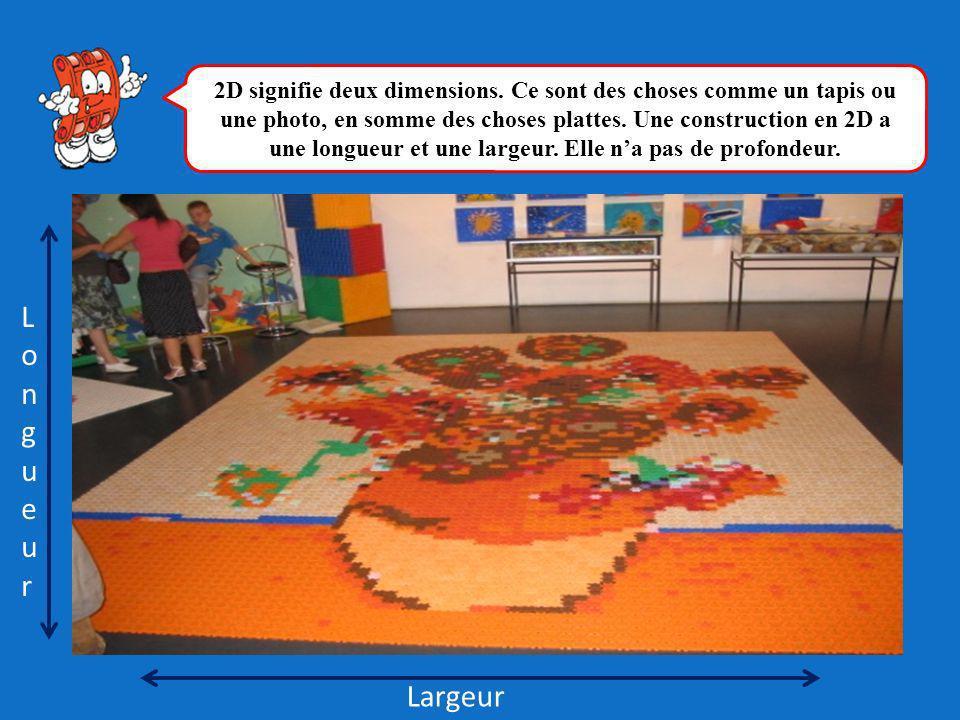 LongueurLongueur Largeur 2D signifie deux dimensions. Ce sont des choses comme un tapis ou une photo, en somme des choses plattes. Une construction en