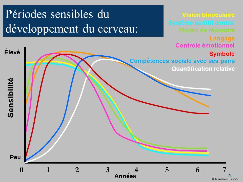 Élevé Peu Années 01237654 Vision binoculaire Moyen de répondre Contrôle émotionnel Symbole Compétences sociale avec ses pairs Quantification relative Système auditif central Langage Hertzman, 2007 Périodes sensibles du développement du cerveau: 5