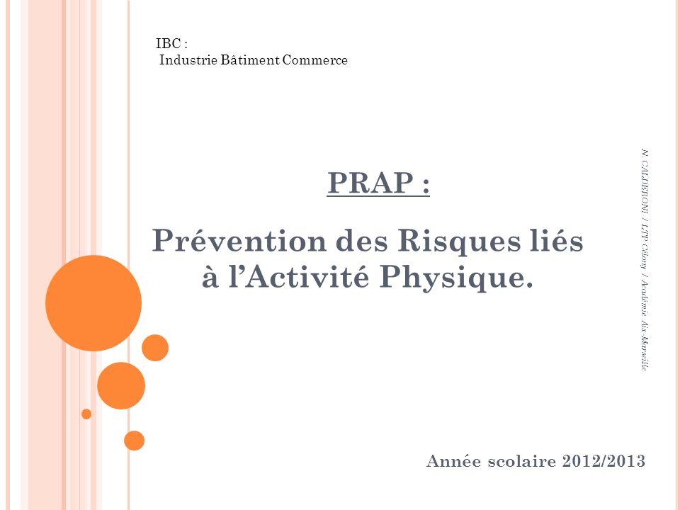 PRAP : Prévention des Risques liés à lActivité Physique. N. CALDERONI / LTP Célony / Académie Aix-Marseille Année scolaire 2012/2013 IBC : Industrie B