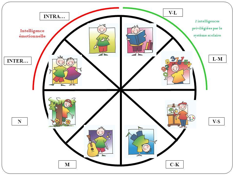 V-L M N INTER… C-K V-S L-M INTRA… 2 intelligences privilégiées par le système scolaire Intelligence émotionnelle