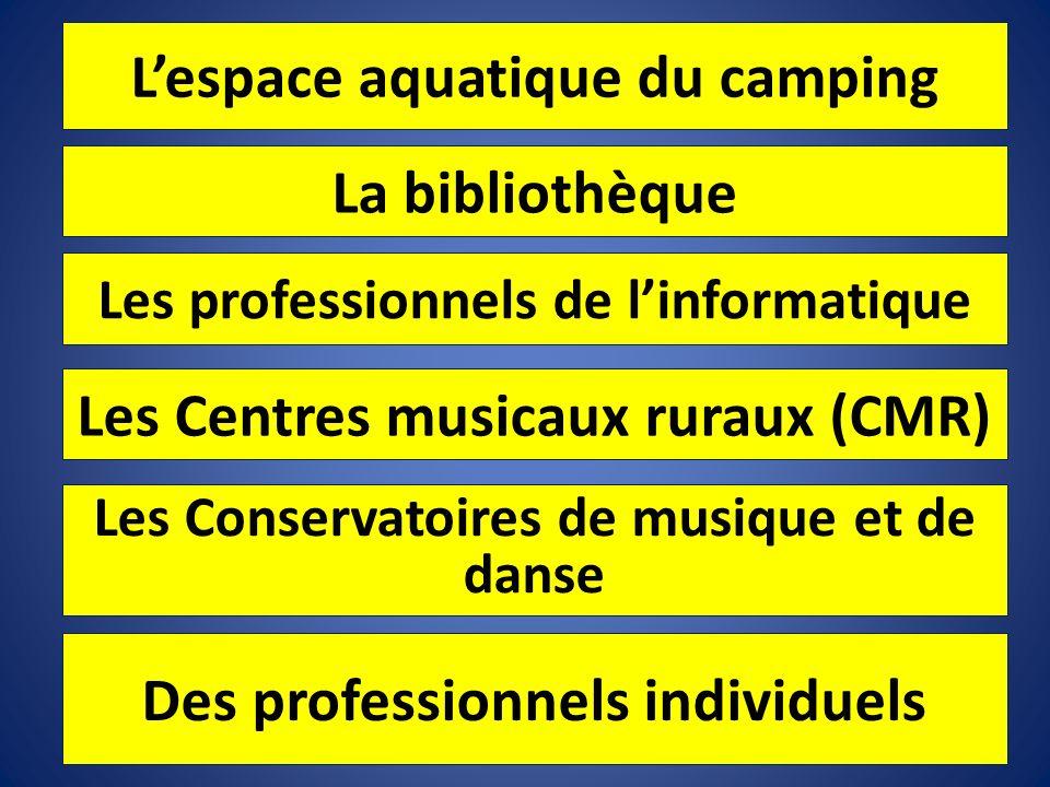 Lespace aquatique du camping La bibliothèque Les professionnels de linformatique Les Centres musicaux ruraux (CMR) Les Conservatoires de musique et de