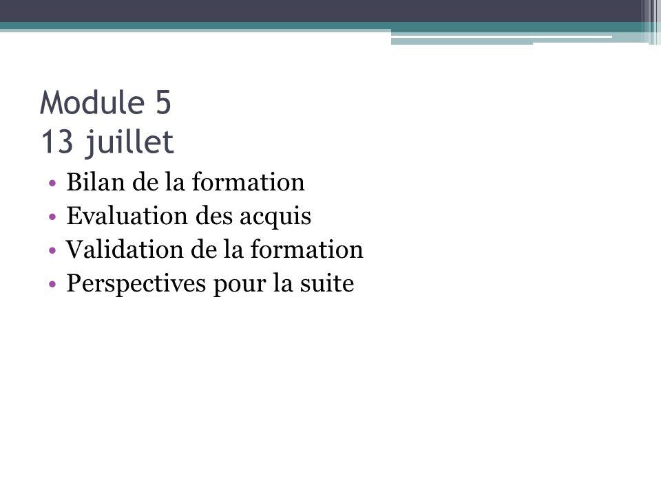 Module 5 13 juillet Bilan de la formation Evaluation des acquis Validation de la formation Perspectives pour la suite