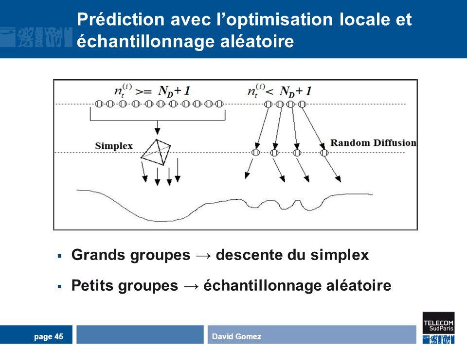 Prédiction avec loptimisation locale et échantillonnage aléatoire David Gomezpage 45 Grands groupes descente du simplex Petits groupes échantillonnage