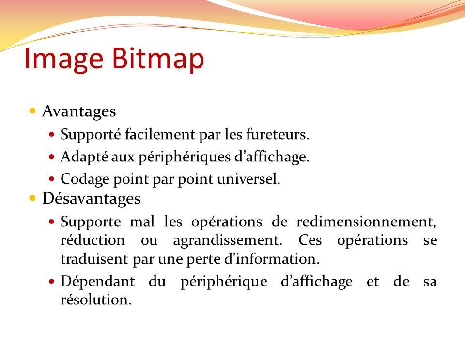 Image Bitmap Avantages Supporté facilement par les fureteurs. Adapté aux périphériques daffichage. Codage point par point universel. Désavantages Supp