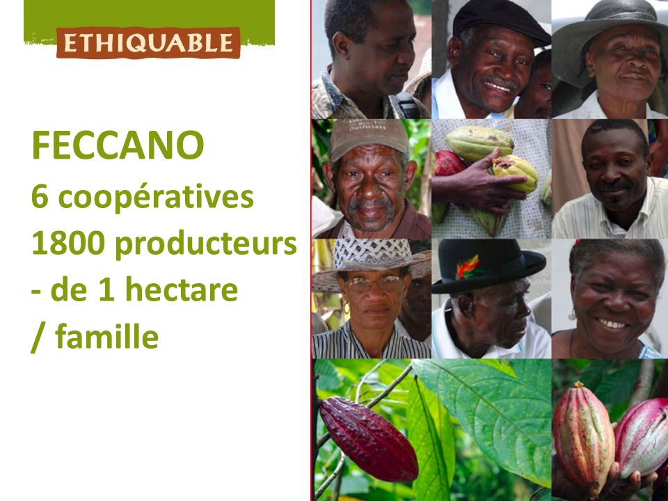 FECCANO 6 coopératives 1800 producteurs - de 1 hectare / famille