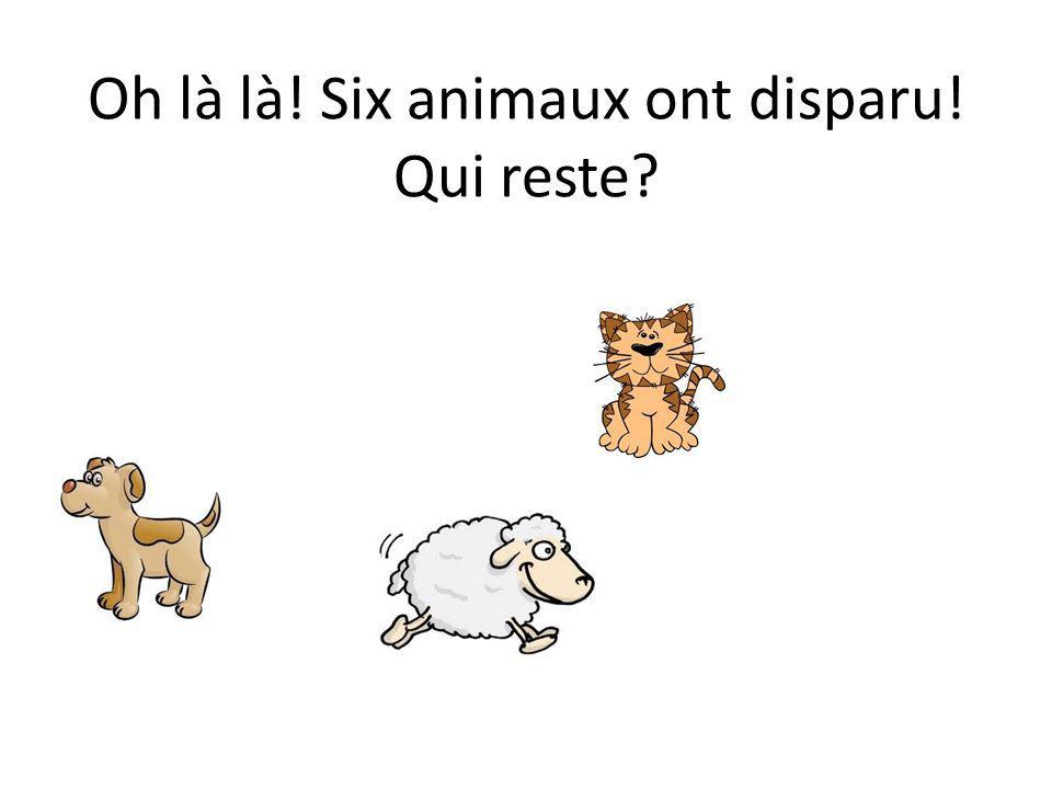 Oh là là! Six animaux ont disparu! Qui reste?