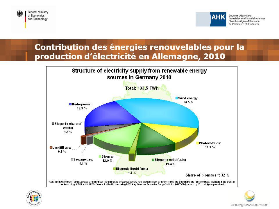 Contribution des énergies renouvelables pour la production délectricité en Allemagne, 2010