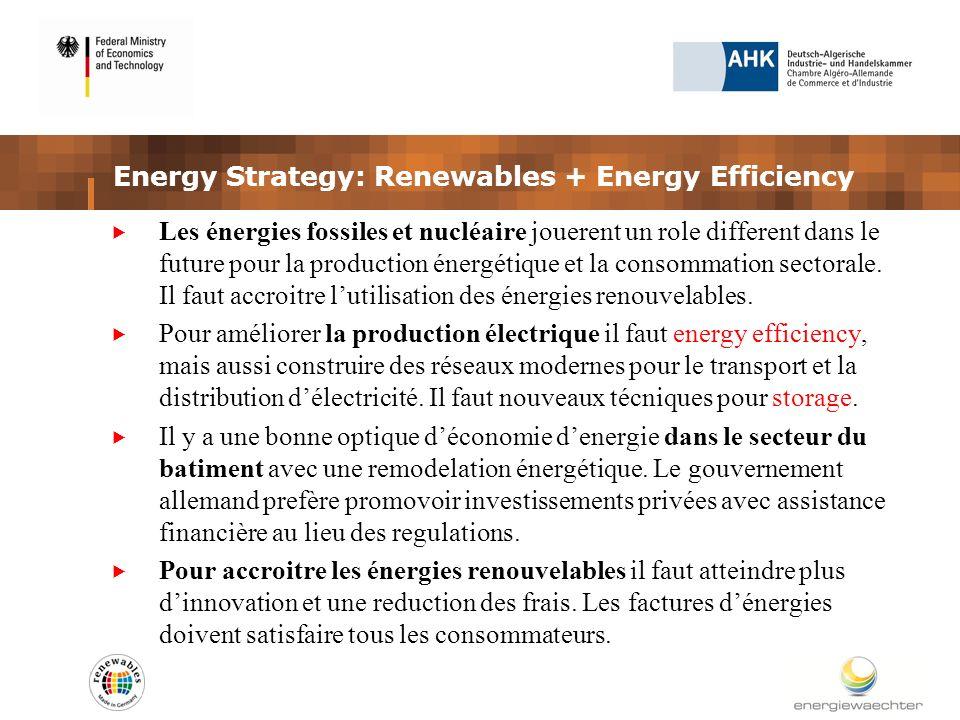 Energy Strategy: Renewables + Energy Efficiency Les énergies fossiles et nucléaire jouerent un role different dans le future pour la production énergétique et la consommation sectorale.