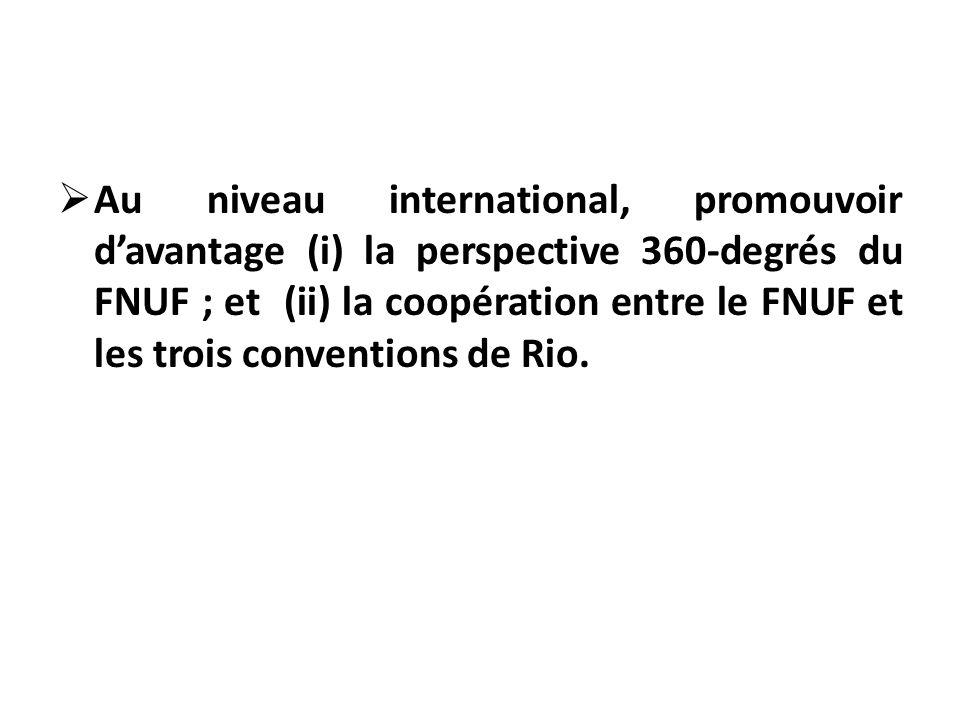 Au niveau international, promouvoir davantage (i) la perspective 360-degrés du FNUF ; et (ii) la coopération entre le FNUF et les trois conventions de