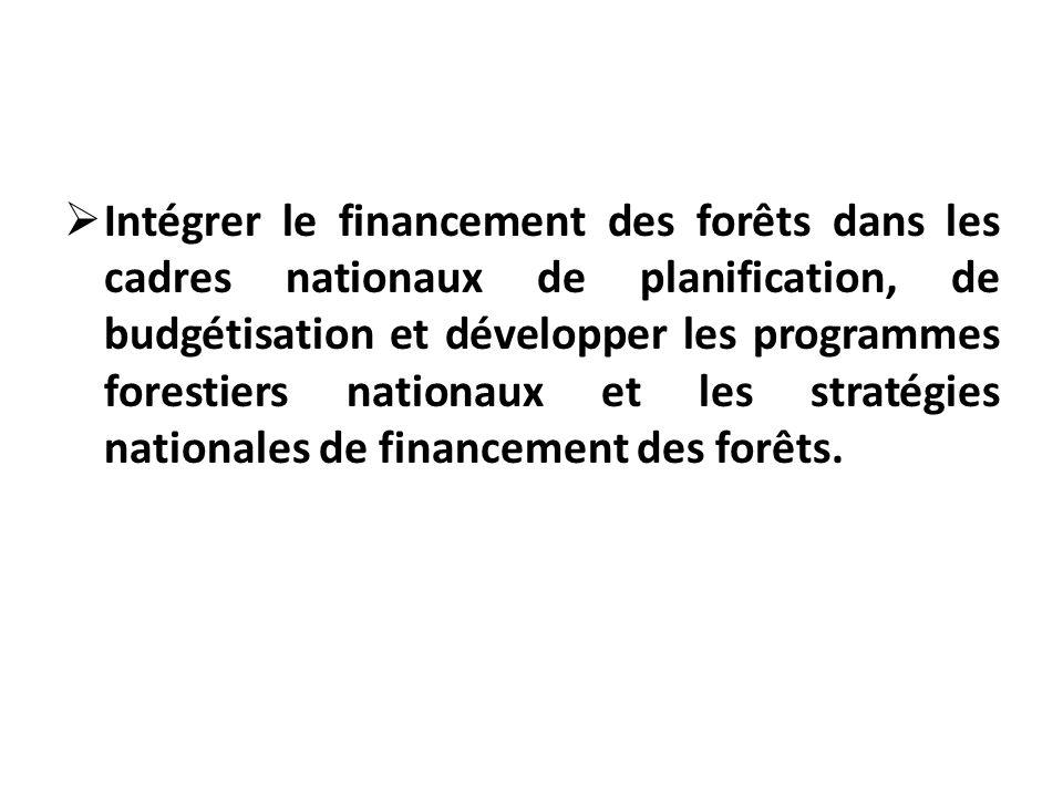 Intégrer le financement des forêts dans les cadres nationaux de planification, de budgétisation et développer les programmes forestiers nationaux et les stratégies nationales de financement des forêts.