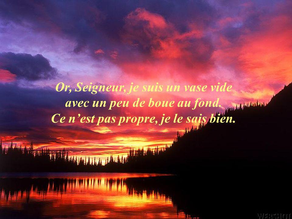 Mais, Seigneur, un saint, cest un vase vide que vous remplissez de votre grâce, qui déborde de votre Amour, de la Sainteté des Trois !