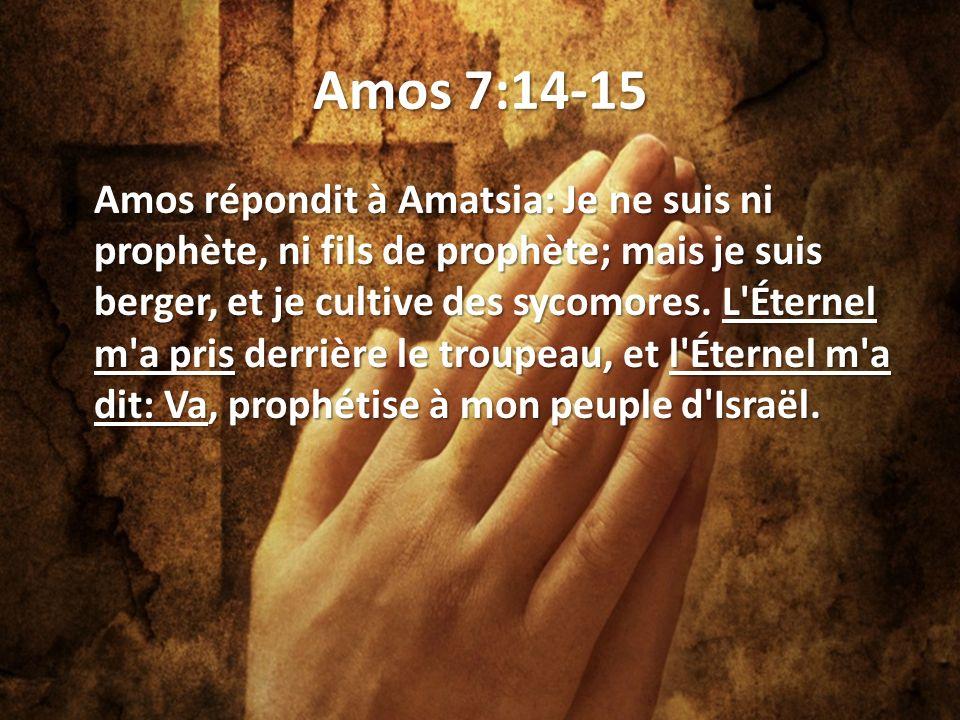 Amos 7:14-15 Amos répondit à Amatsia: Je ne suis ni prophète, ni fils de prophète; mais je suis berger, et je cultive des sycomores.