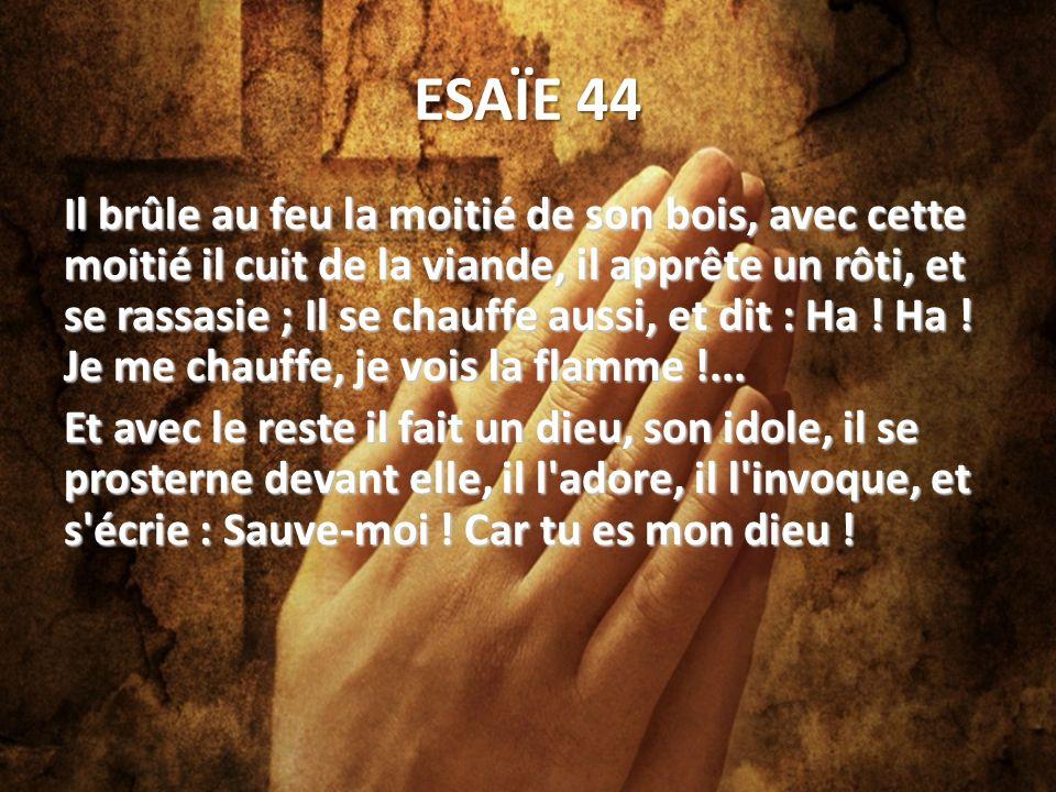 ESAÏE 44 Il brûle au feu la moitié de son bois, avec cette moitié il cuit de la viande, il apprête un rôti, et se rassasie ; Il se chauffe aussi, et dit : Ha .