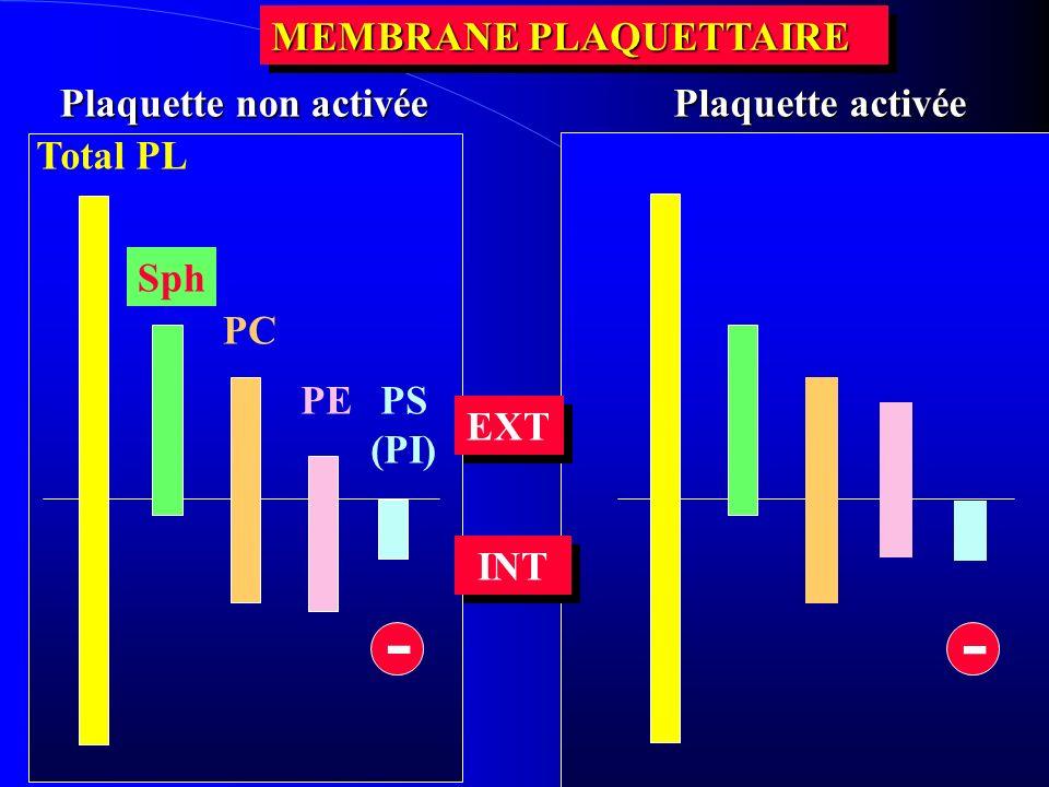 Total PL Sph PC PE PS (PI) INT MEMBRANE PLAQUETTAIRE Plaquette activée Plaquette non activée EXT - -