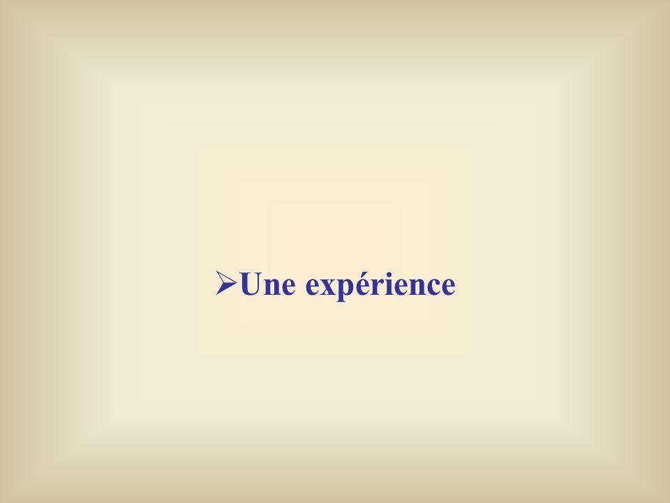 Une expérience