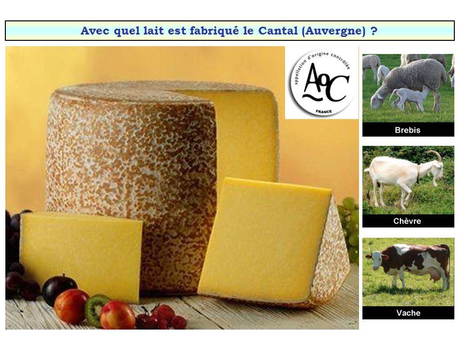 Avec quel lait est fabriqué le Rocamadour (Périgord & Quercy) ?