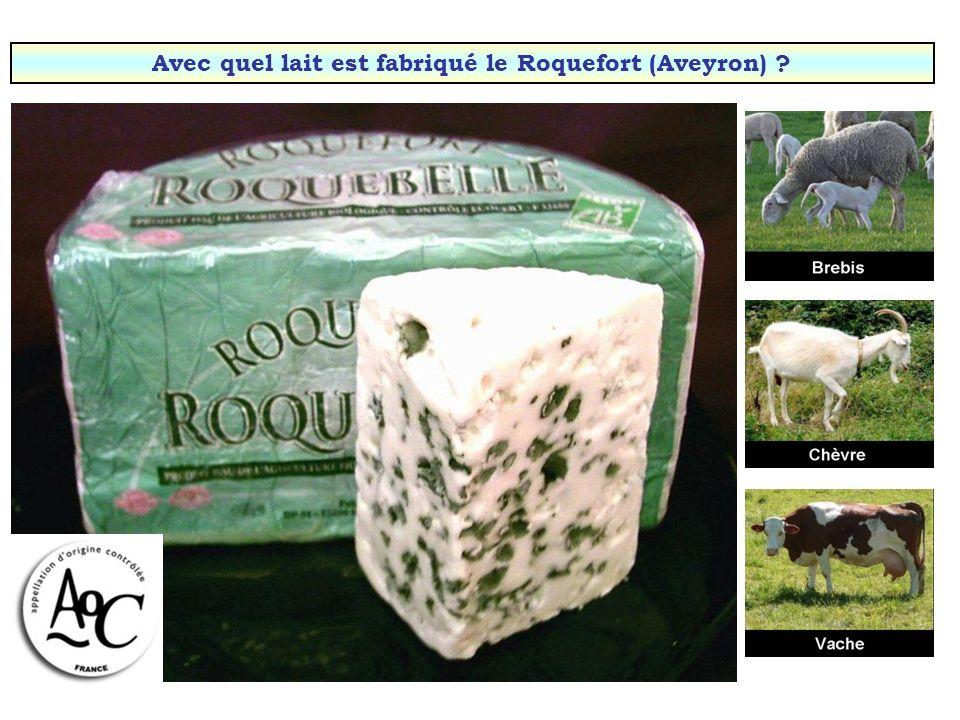 Avec quel lait est fabriqué le Cantal (Auvergne) ?