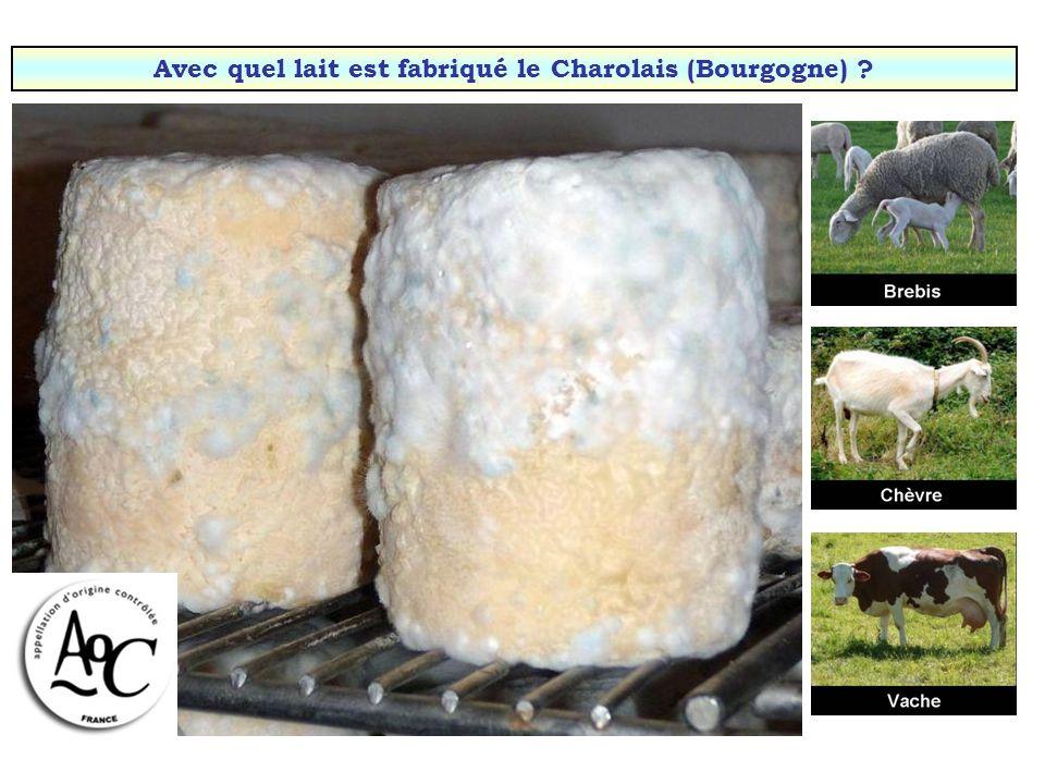 Avec quel lait est fabriqué le bleu dAuvergne ?
