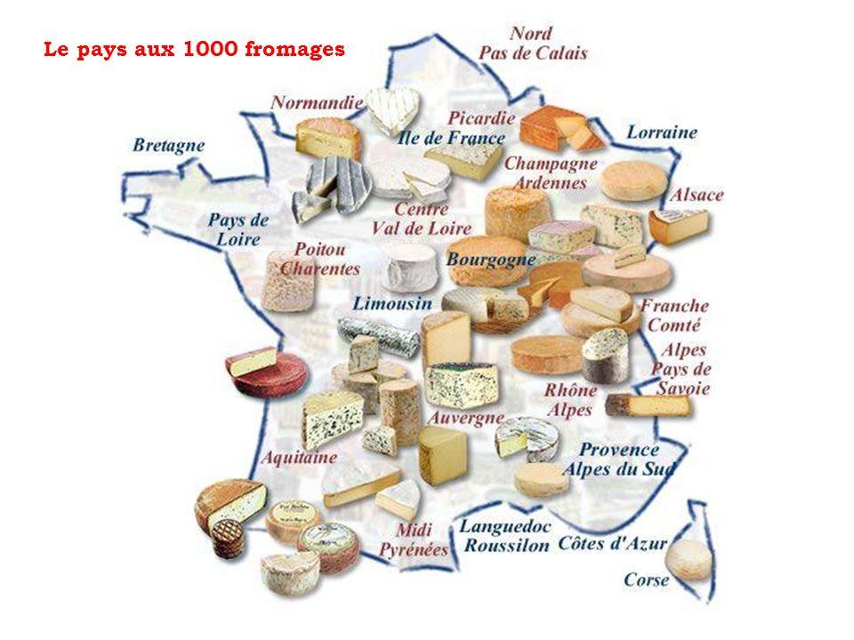 (qui puent) Le pays des fromages TEST QUIZ 5KNA Productions 2013