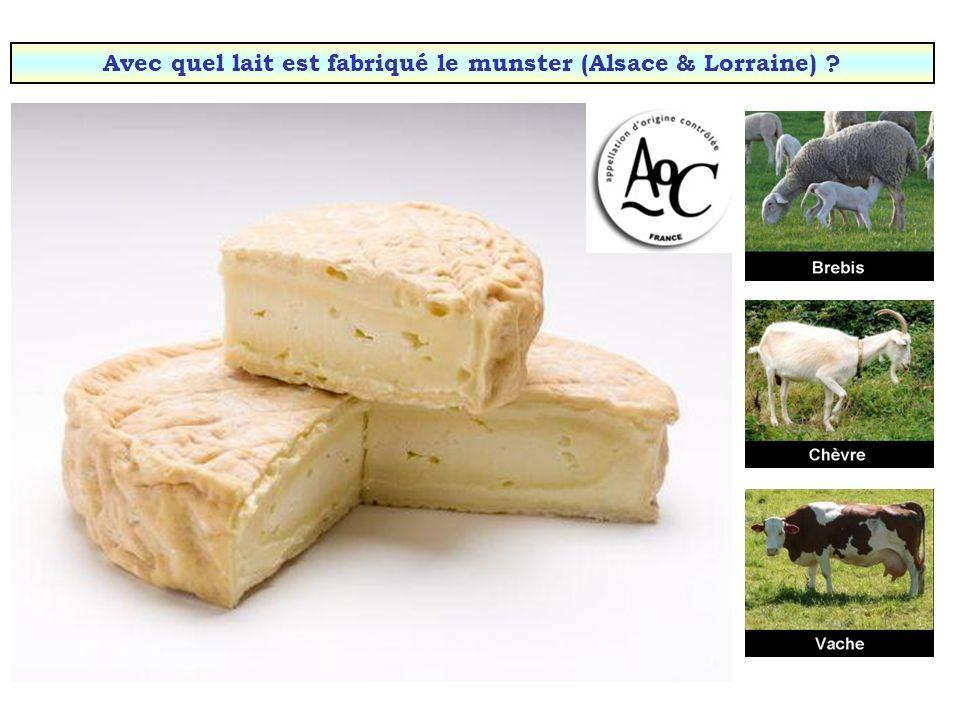Avec quel lait est fabriqué le Selles-sur-Cher (Loir-et-Cher) ?