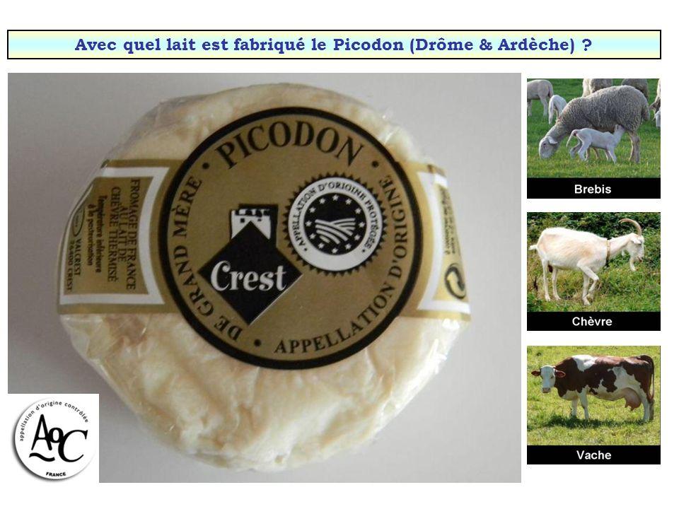 Avec quel lait est fabriqué le Pouligny-Saint-Pierre (Berry) ?