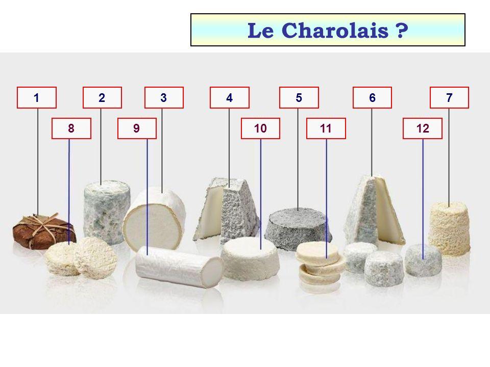 12111098 7654321 Le Selles-sur-Cher ?