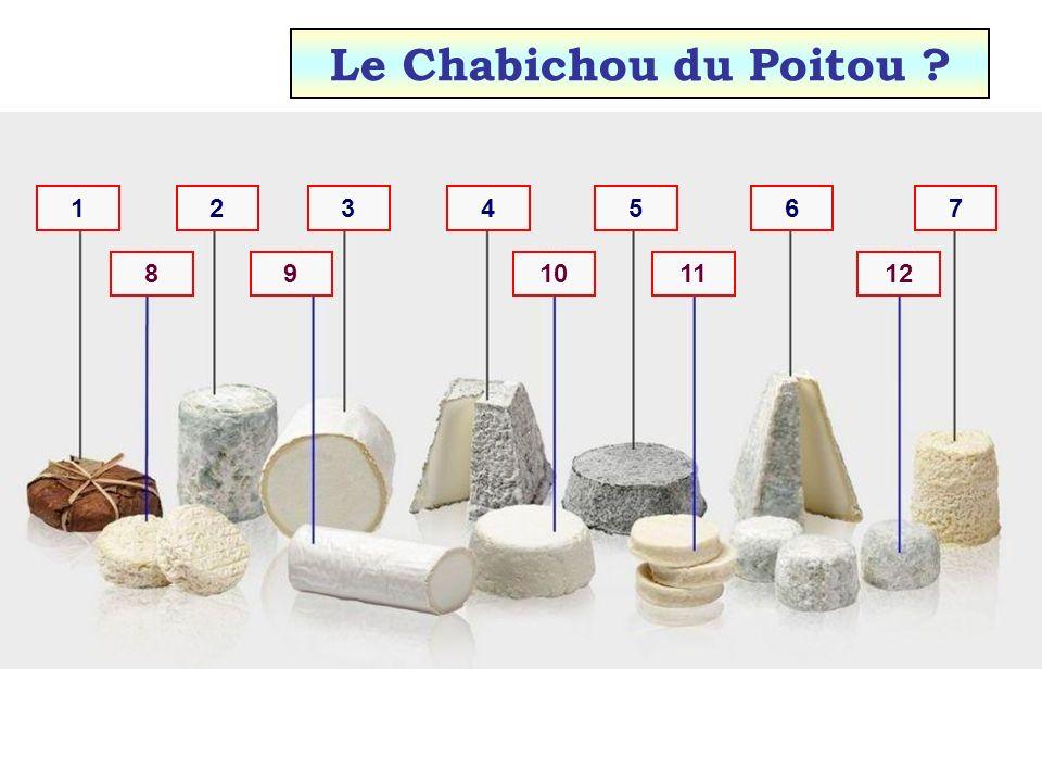 12111098 7654321 Le Charolais ?